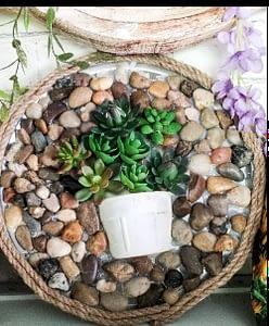 DIY pizza pan garden using Dollar Tree products
